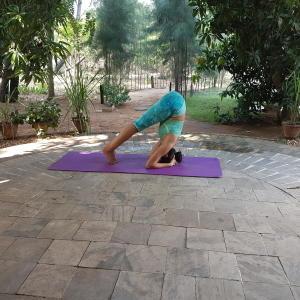 ashthanga-yoga