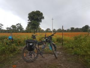 calicut-to-bangalore