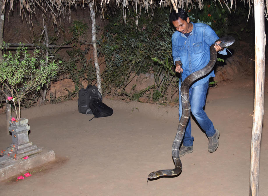 snake-rescuer