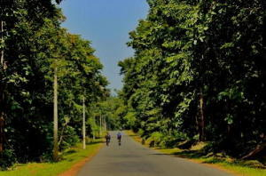 cycling through a tiger reserve