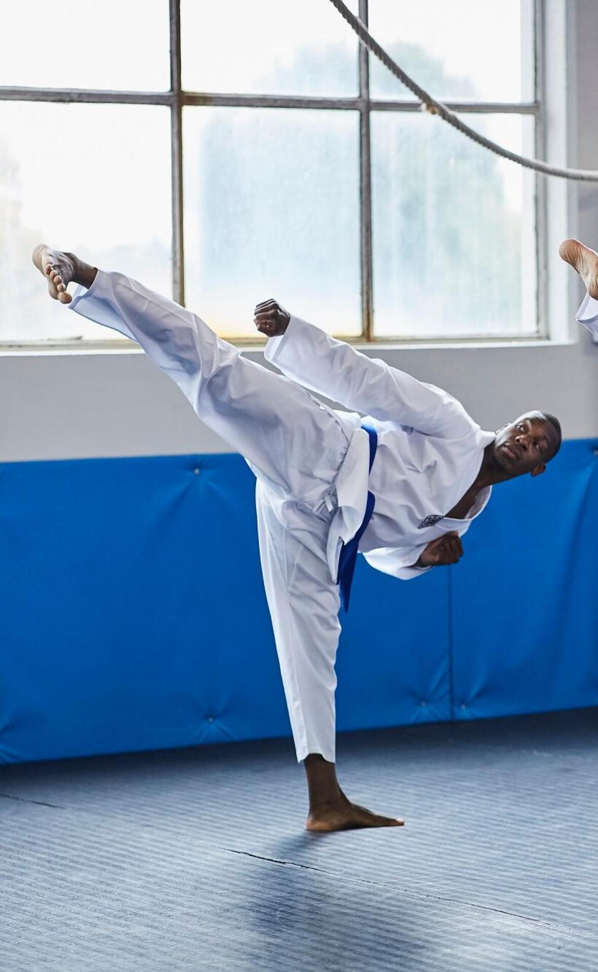 Qu'est-ce que le taekwondo ? Une introduction