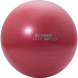 Christopeit Gym balle 65cm incl. pompe rouge