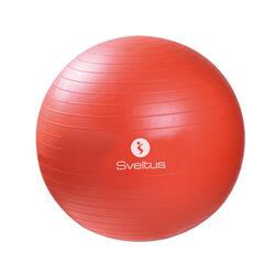 Gymball oranje Ø55 cm los