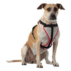Harnais pour chien K9 Series