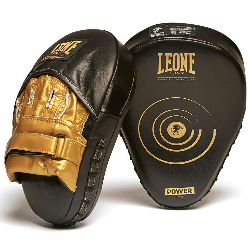 Pattes d'ours boxe Punch mitts