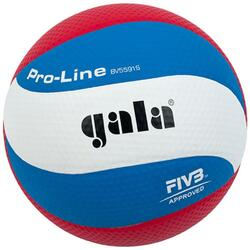 Volleybal Pro-line 5591S10