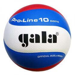 Volleybal Pro-line 5171S10