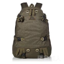 Gregory 33L DAY 1/2 HRB Olive DAY AND A HALF Backpack