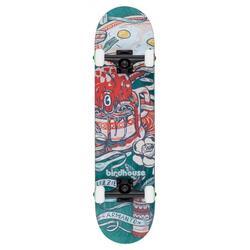 "Birdhouse Stage 2 Armanto 7.75 "" verde Skateboard"
