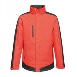 Veste thermique CONTRAST Homme (Rouge / noir)