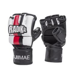 MMA handschoenen FUJI MAE