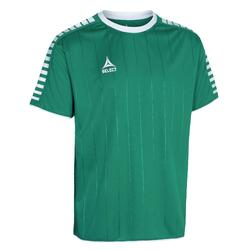 Jersey Select Argentina