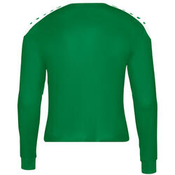 Maillot Jako Striker manches longues