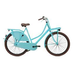 Vélo Popal Carrier Ladies - Vélo de transport - 57 cm - Vert