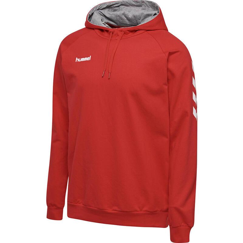 Sweatshirt à capuche Hummel hmlGO cotton