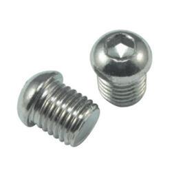 Jagwire Pivot Plug M10-Steel Schroef 2pcs