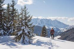 Heren softshell jas voor trekking WindWarm 800 Hybrid - 1008543