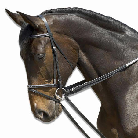 Schooling Horseback Riding Draw Reins - Black