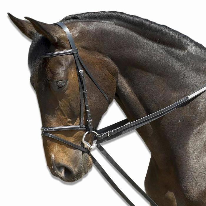 Schlaufzügel Schooling Pferd schwarz