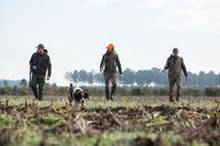 Chaleco acolchado de caza 100 verde