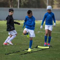 Voetbalschoenen voor kinderen Agility 500 FG - 1032505