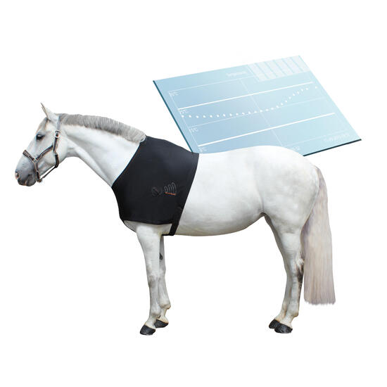 Schoftbeschermer Be Connected met sensor ruitersport pony paard zwart - 1035070