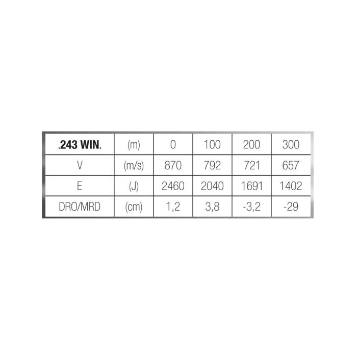 Bala 243 WINCHESTER 6,5 g/100 gr. x20