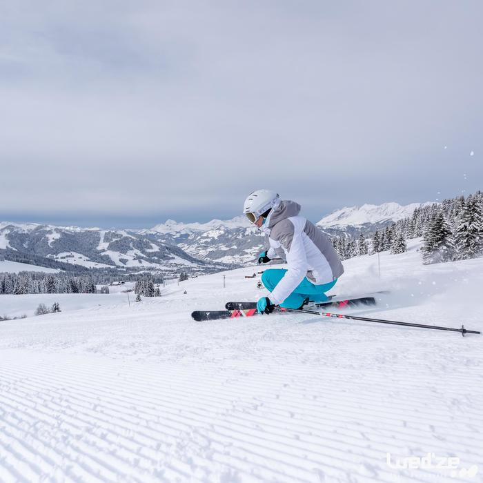 Dames skistokken voor pisteskiën Adix 700 light - 1045232