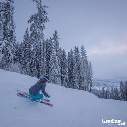 Skihandschoenen Warm Fit voor volwassenen - 1045263