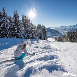 Skihandschoenen Warm Fit voor volwassenen - 1045270