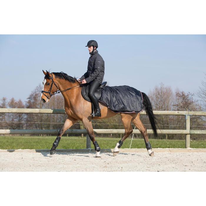 Filet + rênes équitation EDIMBURGH - poney et cheval - 1046033