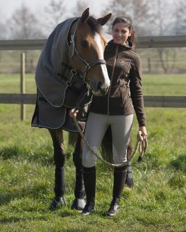 Een ruiter en haar paard in de weide
