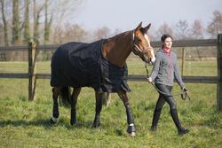 Halster + halstertouw Winner ruitersport - pony's en paarden - 1046137