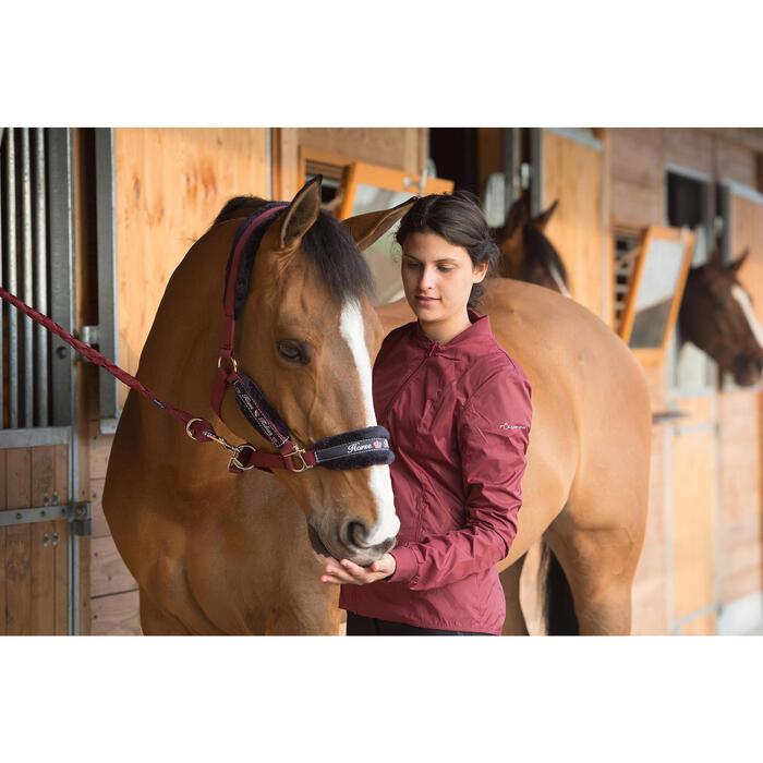 Halfterset Winner mit Führstrick Pony/Pferd bordeaux