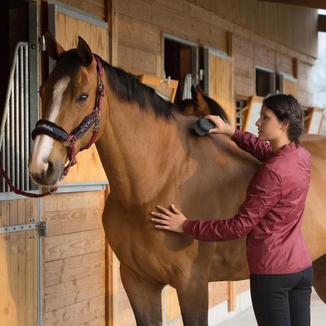 pansage cheval equitation fouganza bien etre 1