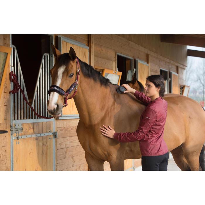 Licol + longe équitation poney et cheval WINNER - 1046212