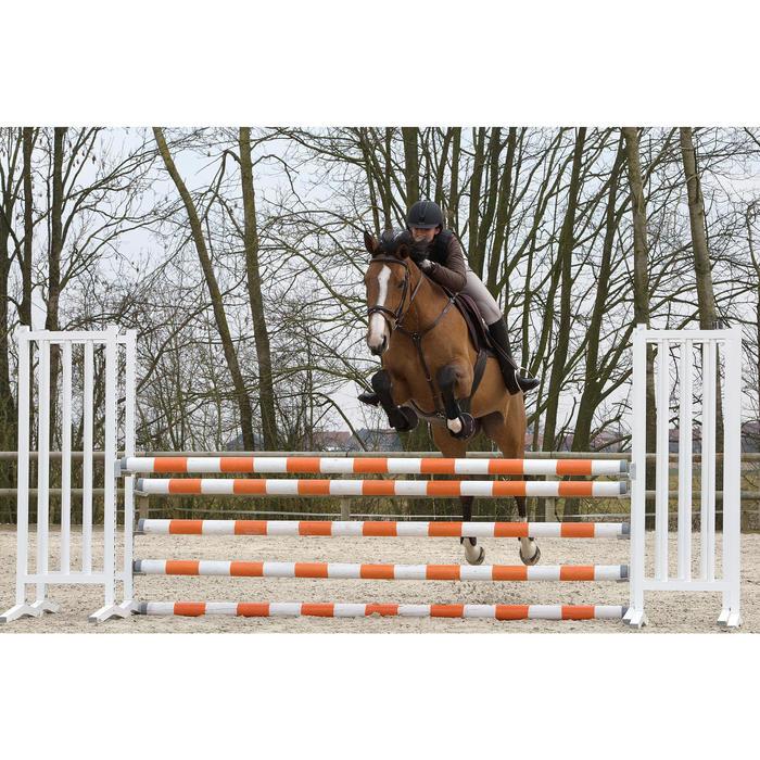 Collier + martingale équitation cheval SCHOOLING - 1046735
