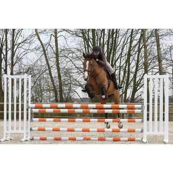 Vorderzeug und Martingal Schooling Pferd braun