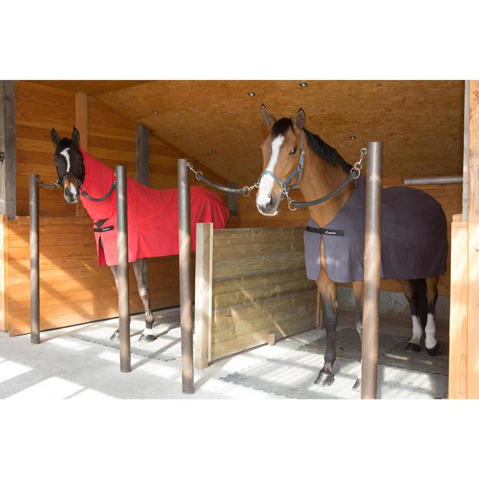 Licol équitation poney et cheval SCHOOLING - 1046752