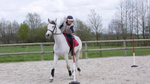 Kleine jongen op een pony die een voorwerp moet pakken