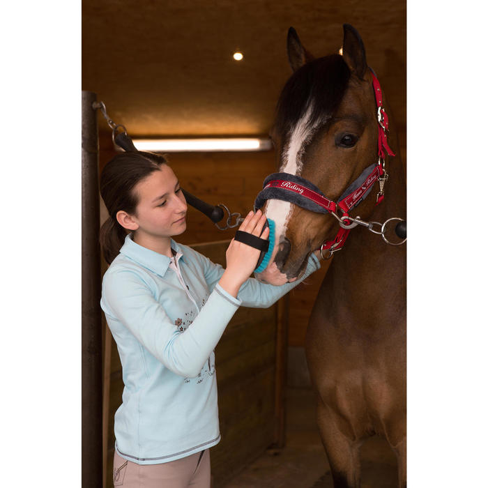 Licol + longe équitation poney et cheval WINNER - 1048816