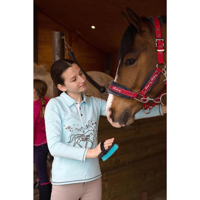 Licol + longe équitation poney et cheval WINNER - 1048819