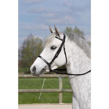 Filet + rênes équitation cheval et poney SCHOOLING cuir noir - 1049406