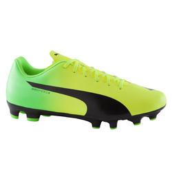 Voetbalschoenen Evospeed 5.4 FG voor volwassenen geel/groen