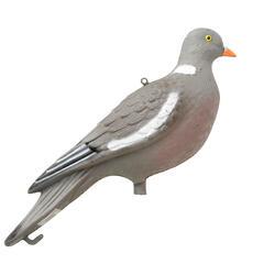 Lokvogel duif apr19 - 1066262