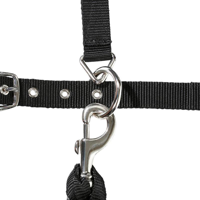Cabezada + cuerda equitación poni y caballo ESTRÁS negro