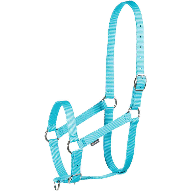 Schooling Horseback Riding Halter for Horse and Pony - Turquoise