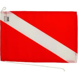 Bandera inmersión internacional