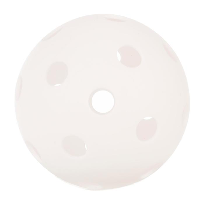 Pickleball bal wit