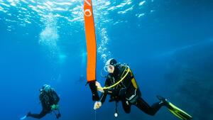 subea-diving
